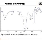 file1-restaurare-troita-slide18