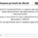 file1-restaurare-troita-slide53