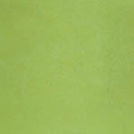 canalgrande_pastiglia