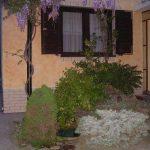 decoratiuni-exterioare-sanmarco-234
